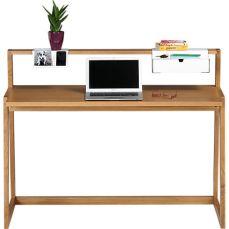 TLD Desk 2